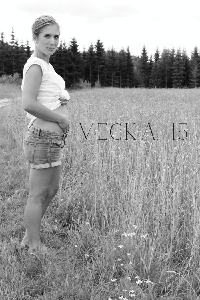 viktuppgång graviditet vecka för vecka